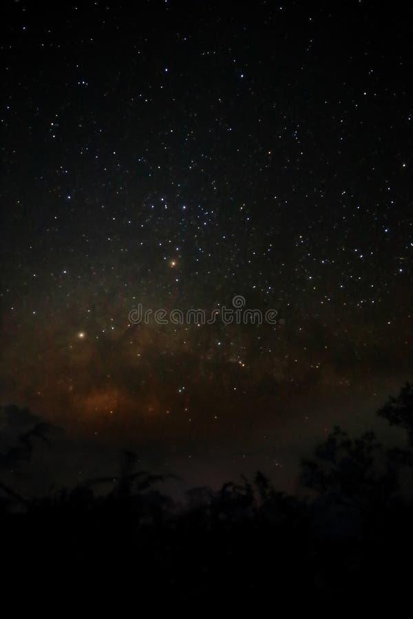 Melkwegmelkweg met foto van de silhouet de bos Lange blootstelling met korrel royalty-vrije stock foto's