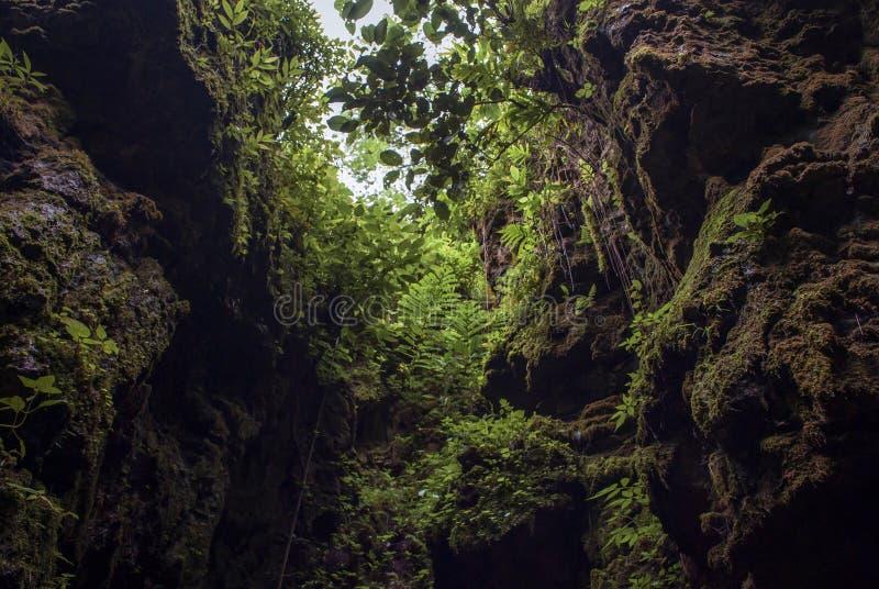 Mellanrummet mellan naturligt stenar väggar som ses från munnen av grottan som är seplawan i Purworejo, Indonesien arkivbilder