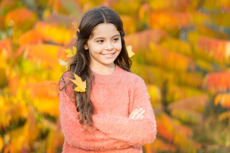 The mellow autumn mood. Happy small child in good mood outdoors. Little child play on fresh air on autumn day. Cheerful. Mood. Setting fall mood royalty free stock photo