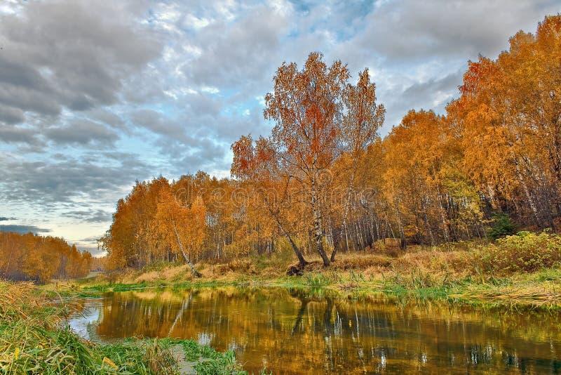 Mellow autumn on river stock image