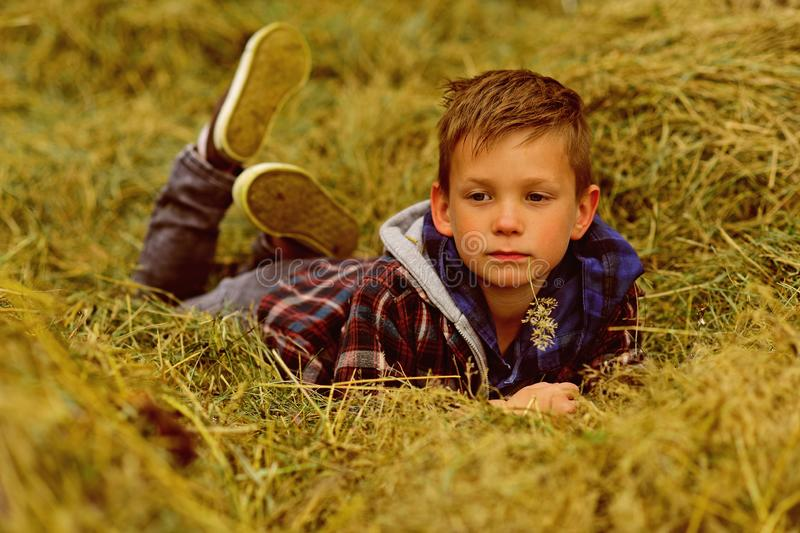 Mellow autumn. Small boy relax in hay. Small boy enjoy autumn holidays in coutryside. The ripeness of autumn.  royalty free stock photo