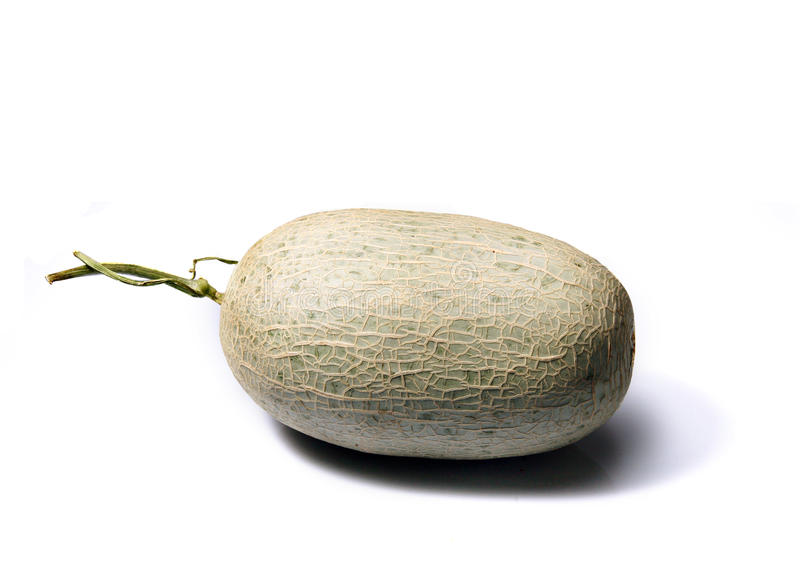 Download Melo stock photo. Image of melon, isolated, gray, open - 30865582