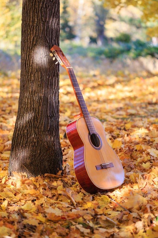 Melodia do outono foto de stock