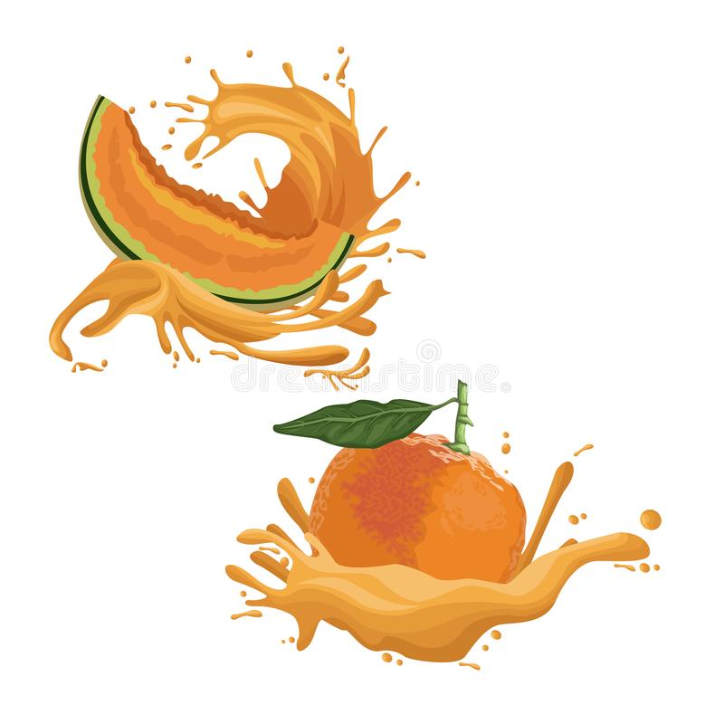 Meloen en oranje fruitplons stock illustratie