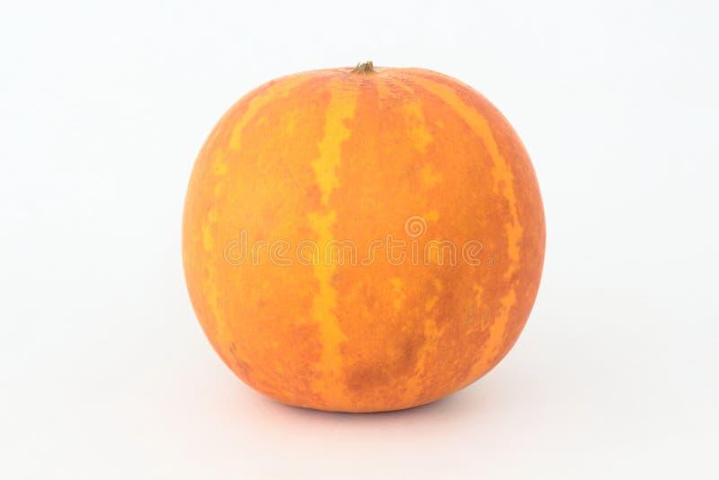 Meloen op een witte achtergrond royalty-vrije stock afbeelding