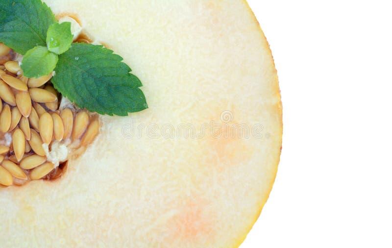 Meloen op witte achtergrond wordt geïsoleerd die Meloen in een besnoeiing met een twijg van munt stock afbeeldingen