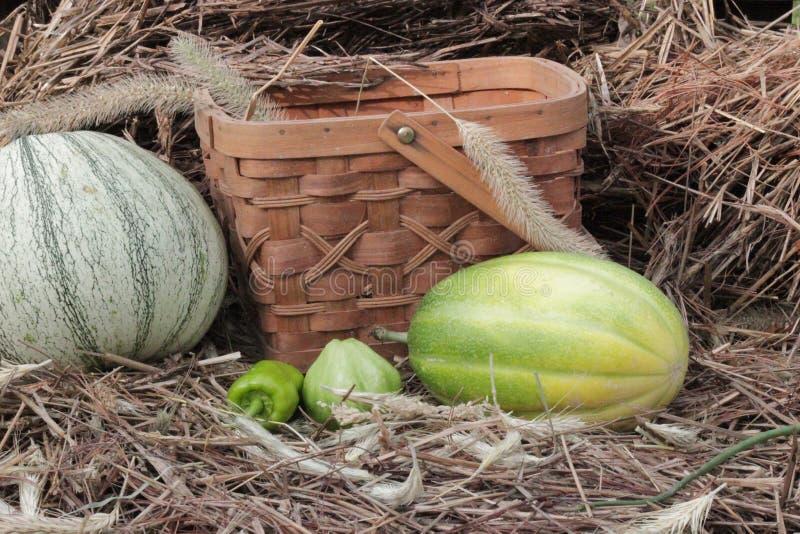 Meloen, peper, pompoen naast de oogstmand met stro en hooi op de achtergrond royalty-vrije stock fotografie