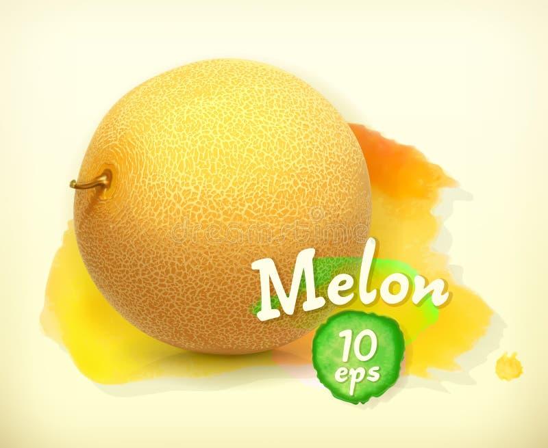 Meloen vectorillustratie vector illustratie
