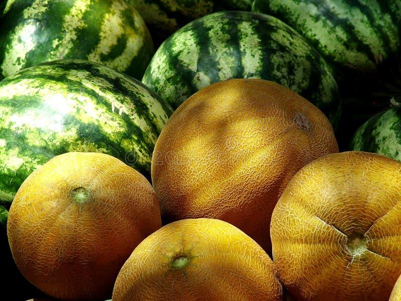 Meloenen royalty-vrije stock fotografie
