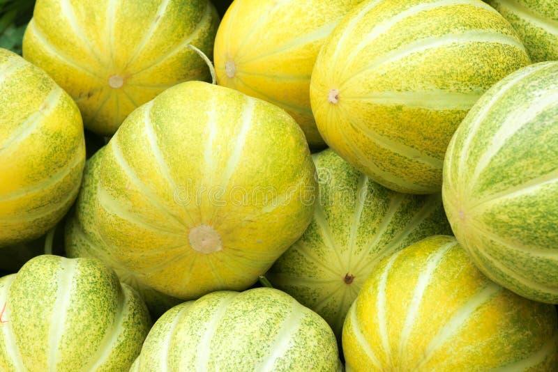 Meloenen stock afbeelding