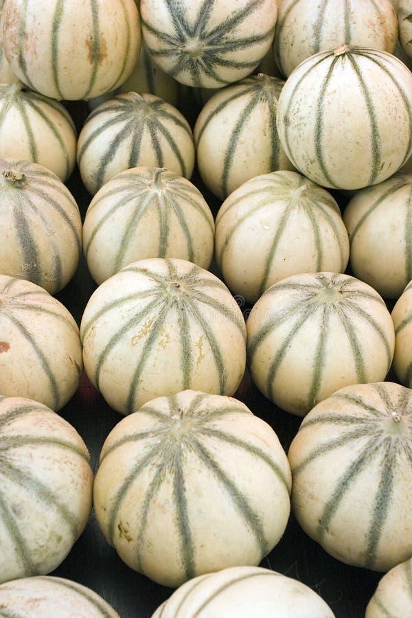 Meloenen bij de markt van de landbouwer stock foto