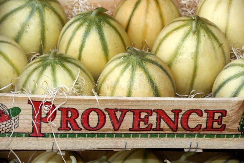 Meloenen van Frankrijk royalty-vrije stock fotografie