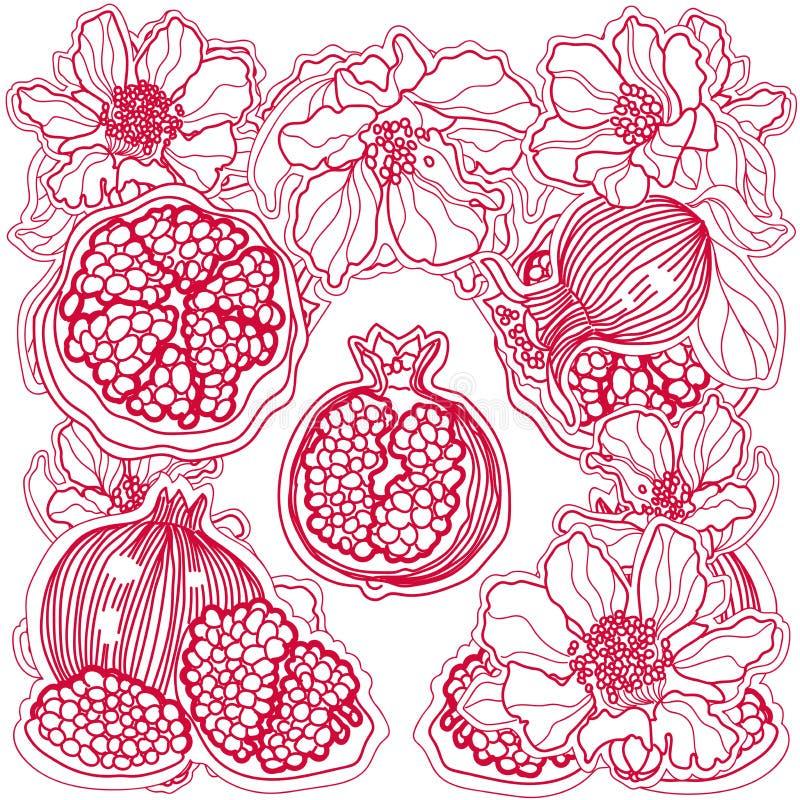 Melograni e fiori rossi dell'ornamento fotografia stock libera da diritti