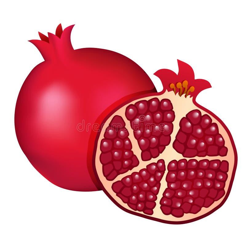 Melograno rosso di Borgogna e metà del melograno isolati sul whi royalty illustrazione gratis