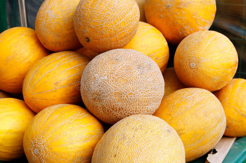Download Melon stock image. Image of food, yellow, market, fruits - 11650563
