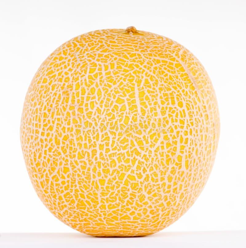 Melon Stock Images