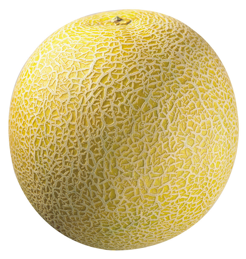 Melon. Yellow melon