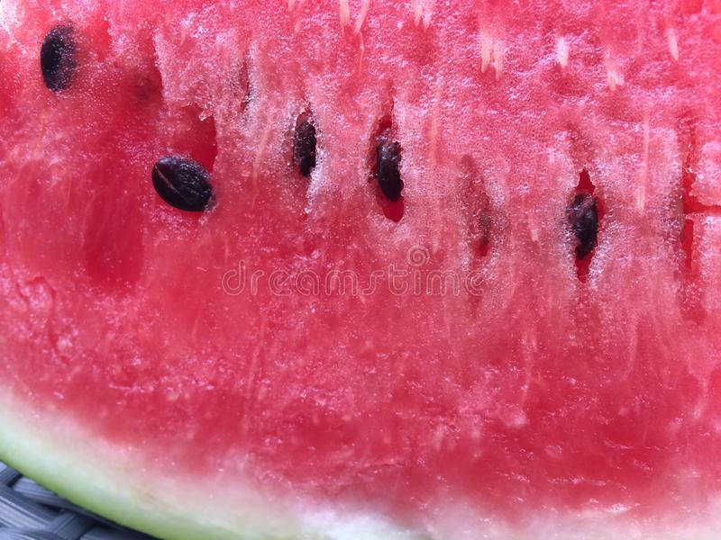 melon photographie stock