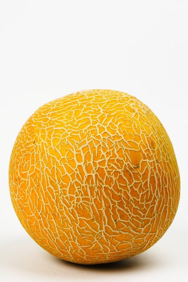 A Melon royalty free stock photos