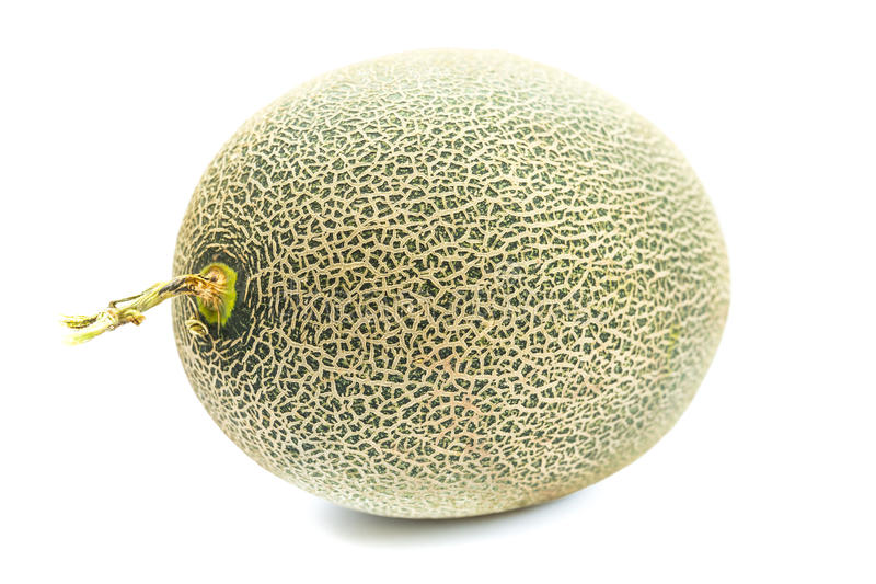 Melon Background stock image