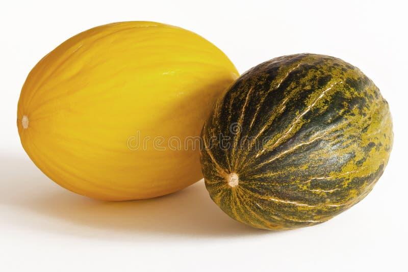 Melon - canary and piel de sapo. Canary melon and piel de sapo melon stock image