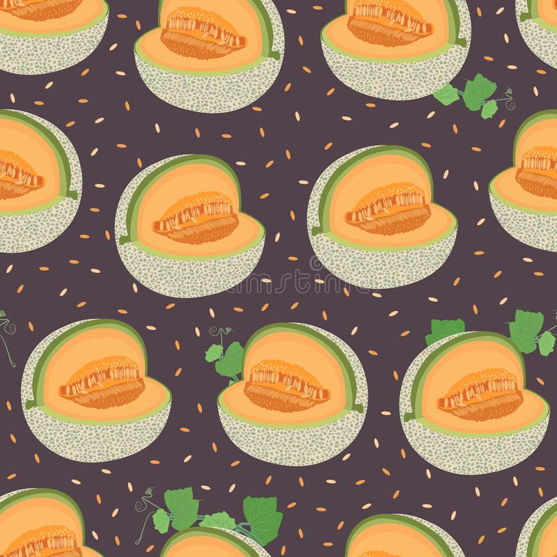 Melon cut seamless pattern on brown background with seed, Fresh cantaloupe melon pattern background, Fruit vector vector illustration