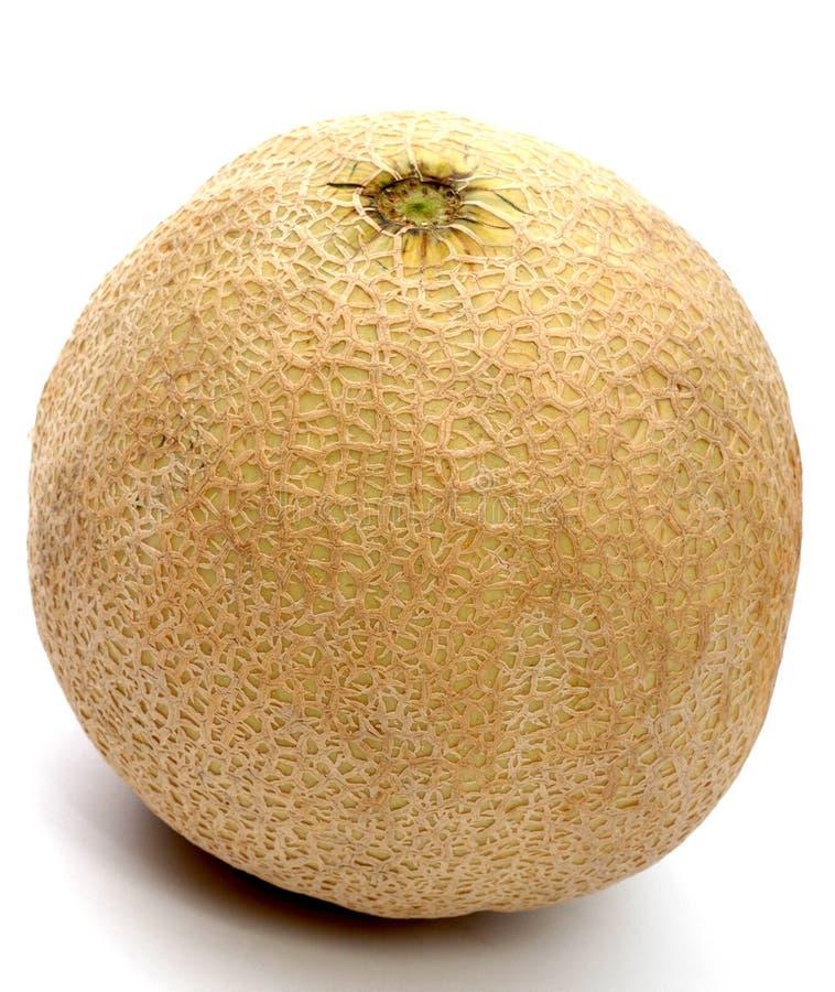 Melon d'Athéna photographie stock