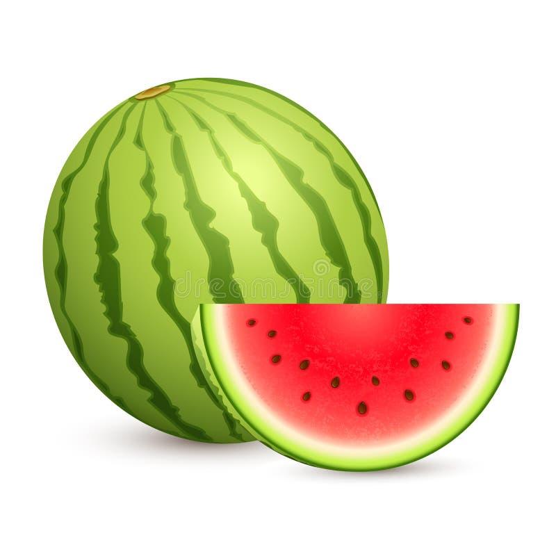 Melon d'eau juteux illustration libre de droits