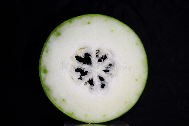 Melon d'hiver photo libre de droits