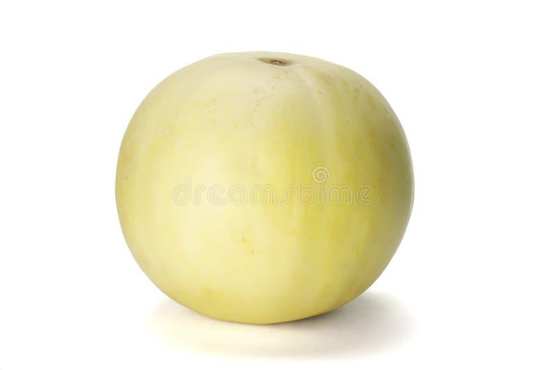 Melon de miellée photo libre de droits
