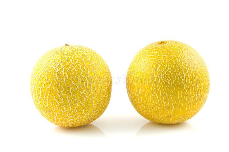 Melon deux jaune frais photo libre de droits