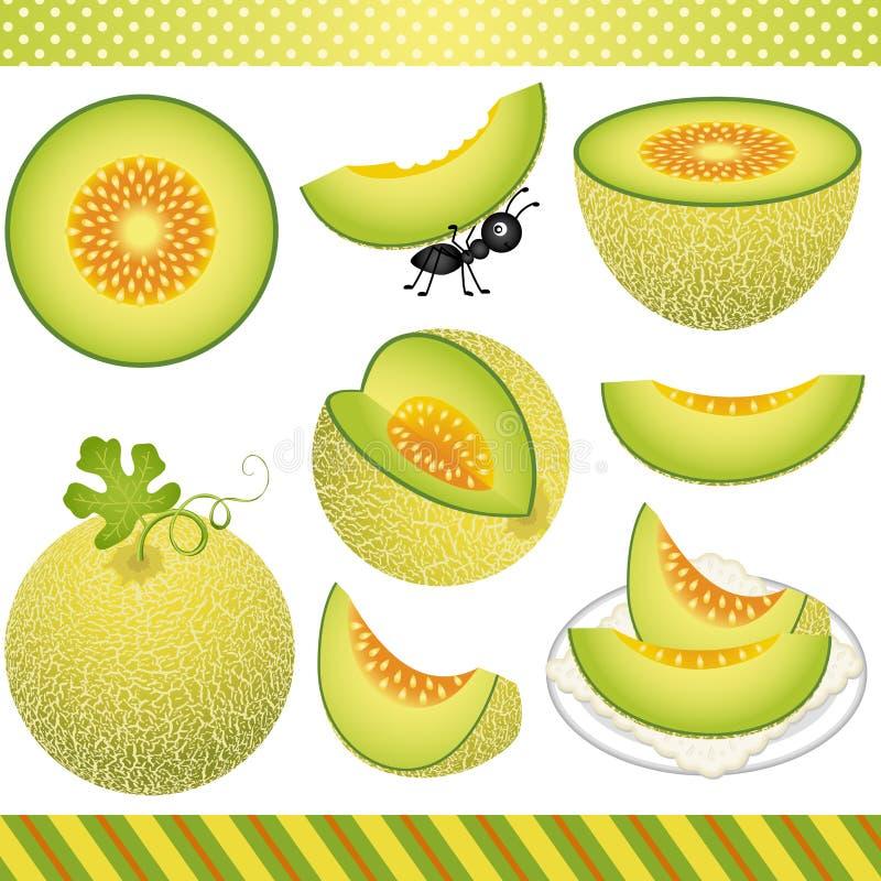Melon Digital Clipart de cantaloup illustration stock