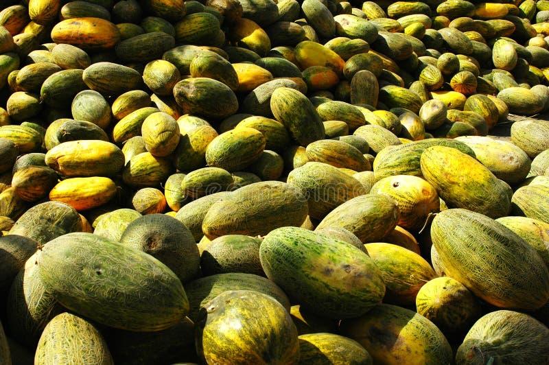 Melon doux photo libre de droits