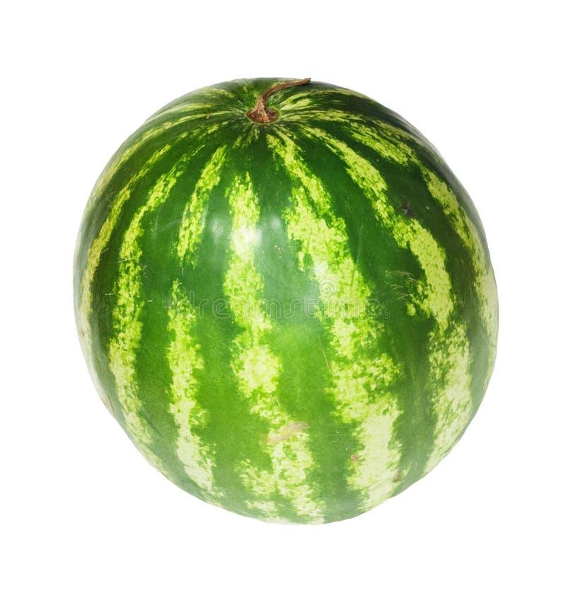 melon duży woda obrazy stock