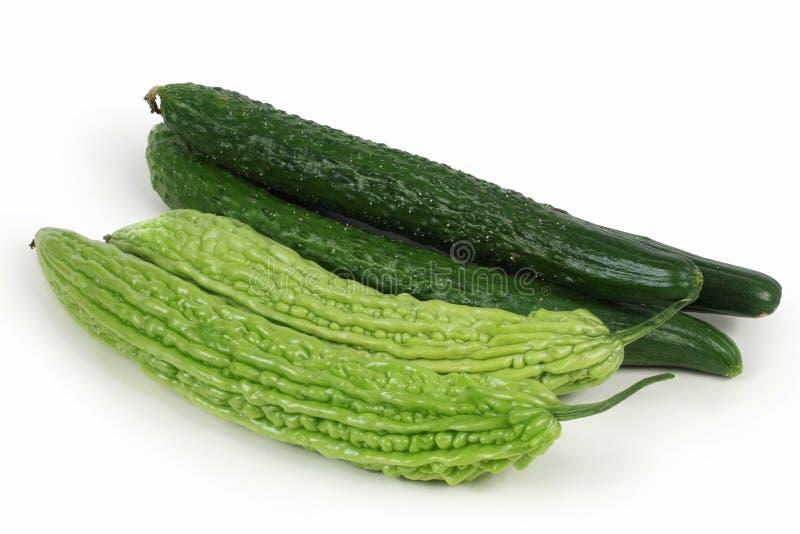 Melon et concombre amers photos libres de droits