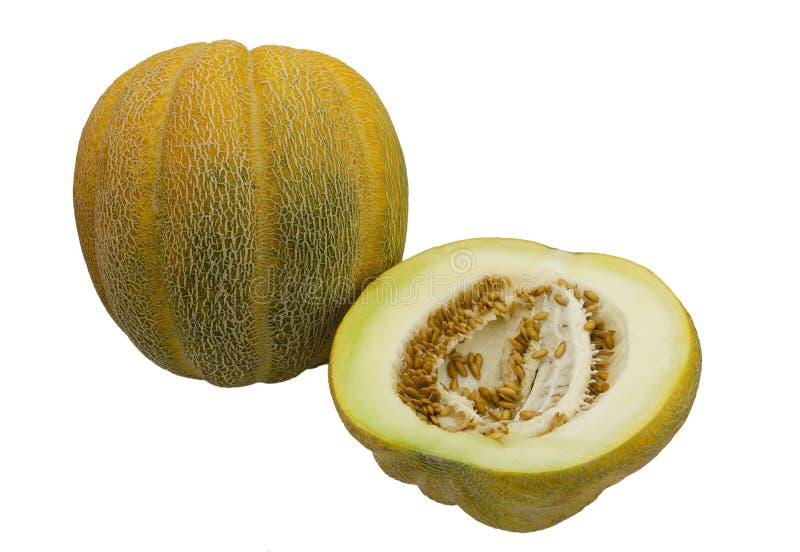Melon Ethiopian, con scanalature longitudinali immagini stock libere da diritti