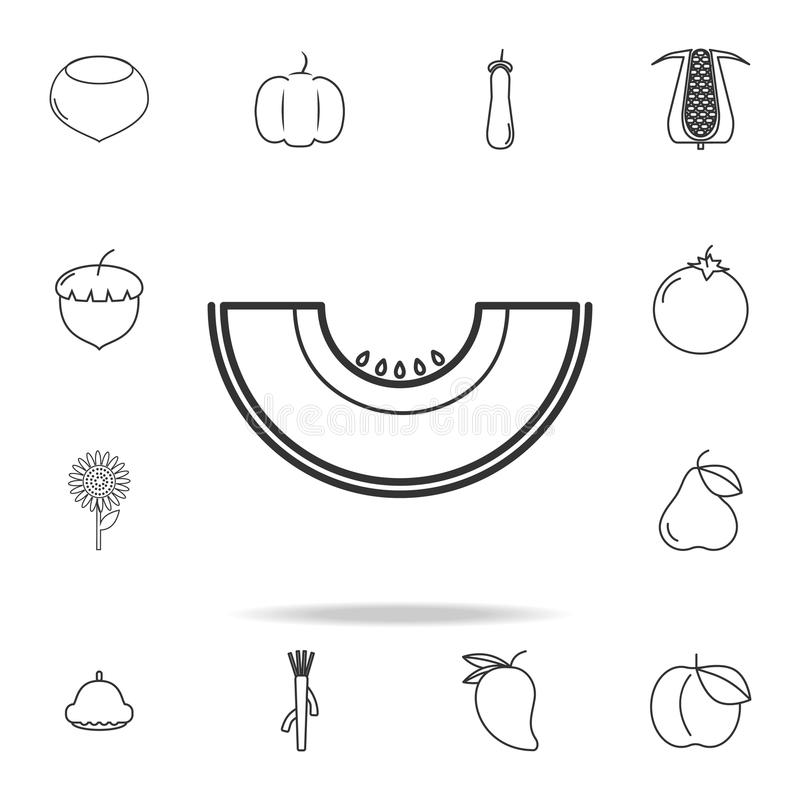 Melon icon. Set of fruits and vegetables icon. Premium quality graphic design. Signs, outline symbols collection, simple thin line royalty free illustration