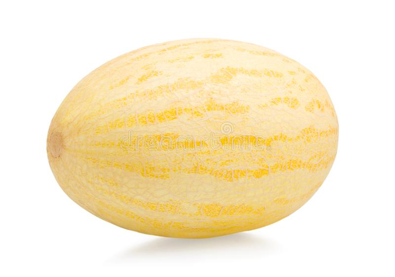 Melon isolated stock images