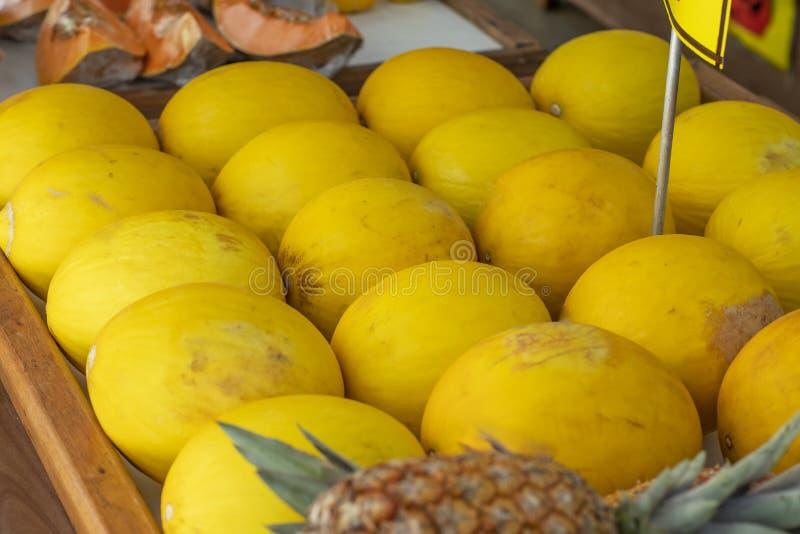 Melon jaune Beaucoup de melons à vendre et ananas à l'arrière-plan image libre de droits