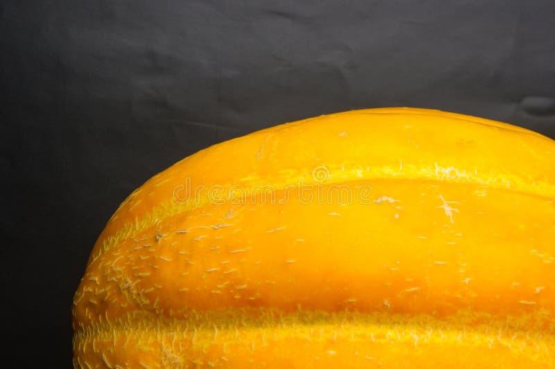 Melon juteux mûr photo libre de droits
