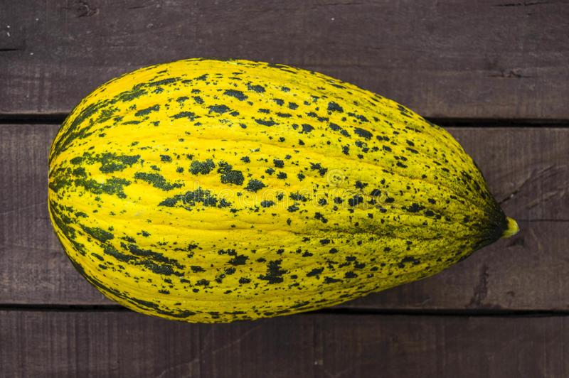 Melon, mature melon, mature melon pictures on wooden floor, royalty free stock photography