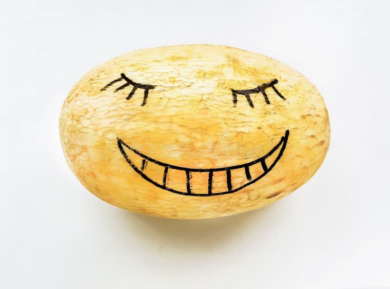 Melon na białym tle zdjęcia royalty free
