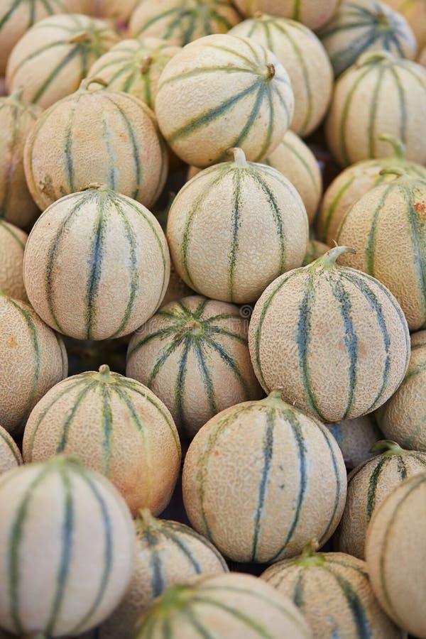 Melon på bonde marknadsför i Paris, Frankrike royaltyfri foto