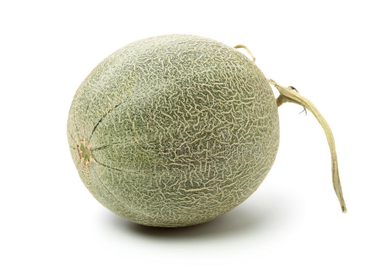 Melon r?ticul? images stock