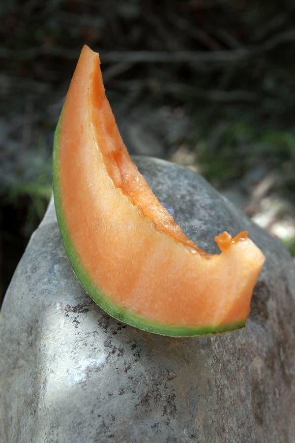 Melon slice. Cantaloupe melon slice on a rock stock photo