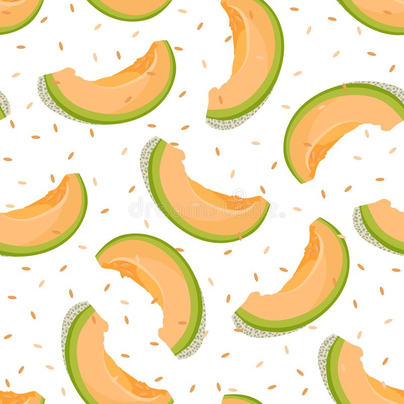 Melon slice seamless pattern on white background with seed, Fresh cantaloupe melon pattern background, Fruit vector stock illustration