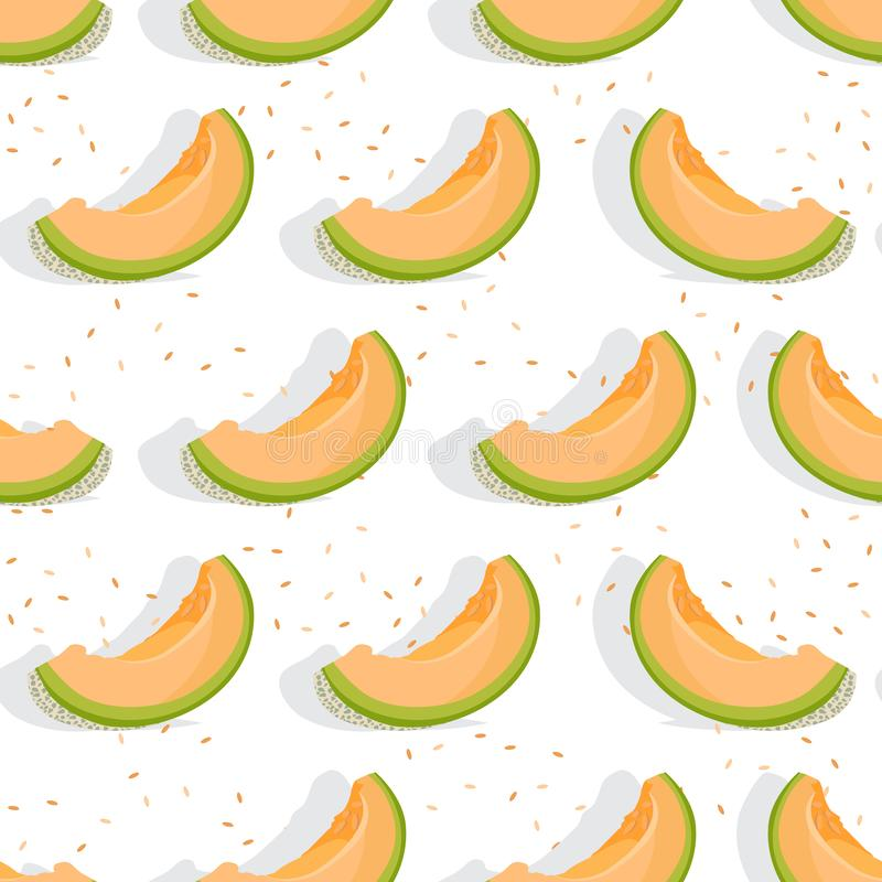 Free Melon Sliced Seamless Pattern On White Background With Shadow, Fresh Cantaloupe Melon Pattern Background Royalty Free Stock Photography - 159946177