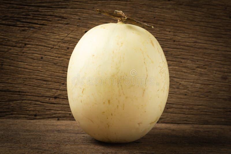 melon ( sunlady) på gammalt trä Morgon arkivbild