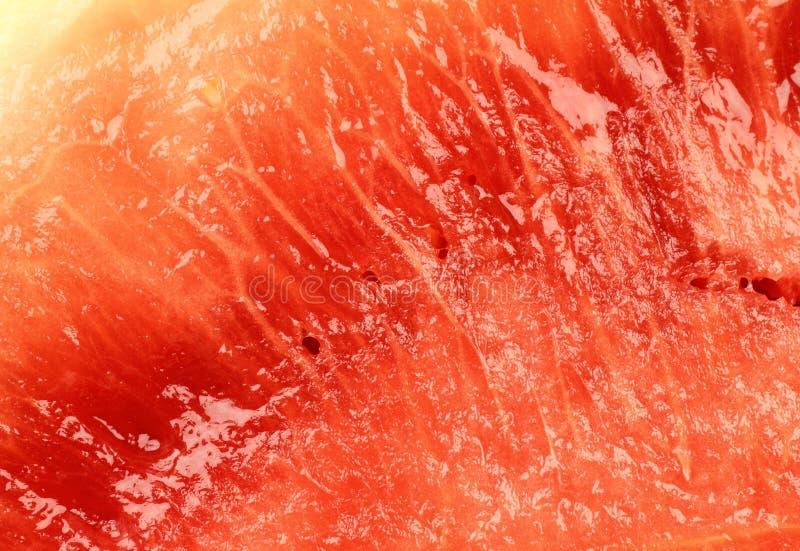 Melon Texture