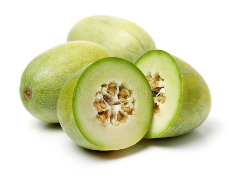Melon vert de cantaloup photo stock